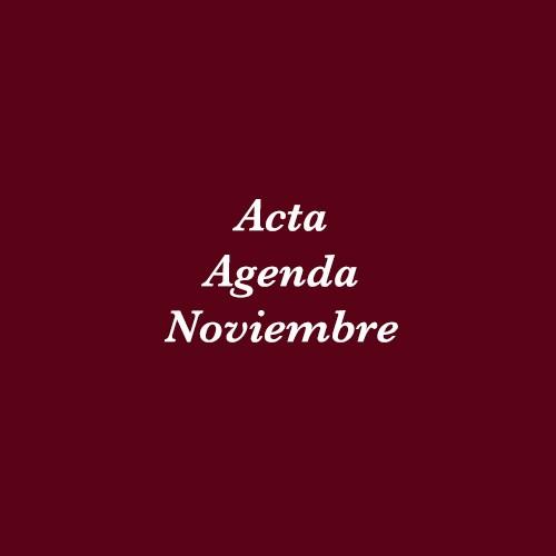Acta Agenda Noviembre