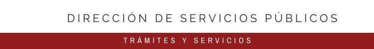 DIRECCIÓN DE SERVICIOS PÚBLICOS