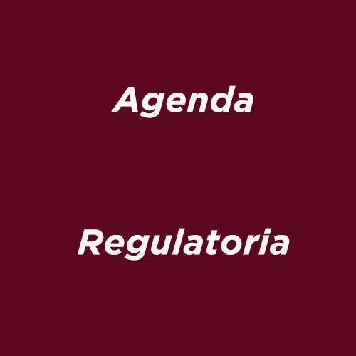Formatos Agenda Regulatoria